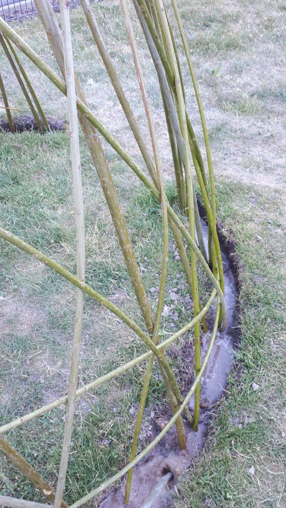 Der Aufbau des Weideniglus